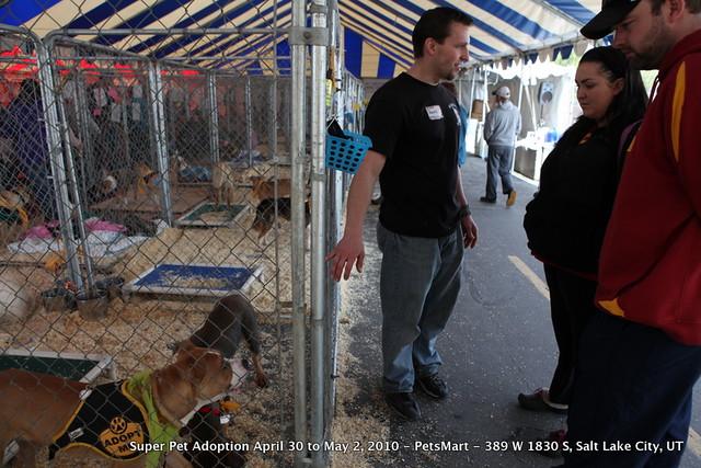 Adopt A Pet Salt Lake City