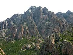 Montée vers l'aiguille 761m : Punta di Monte Sordu