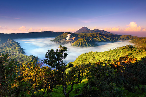 morning light nature fog sunrise canon indonesia landscape photography eos volcano nationalpark sand asia southeastasia day desert outdoor explore caldera lee malang filters frontpage 1022mm gravel surabaya bromo active tengger mountbromo canon1022mm mountsemeru eastjava 50d mountbatok flickrhivemind regionwide mountpananjakan flickrhivemindgroup exploreyourtaginfiveprimeorg