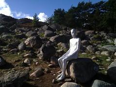 Sculpture at Pilane 2010