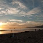 Santa Monica Nov 2010 018