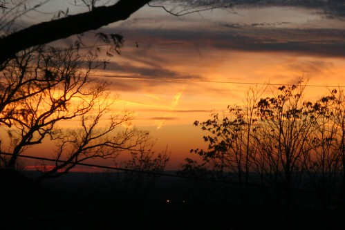 trees sunset sky orange cloud black colors beautiful silhouette skyline clouds grey pastel horizon cloudporn
