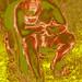 IMG_7651 verz 4 post inv by versionz