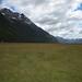 Small photo of New Zealand