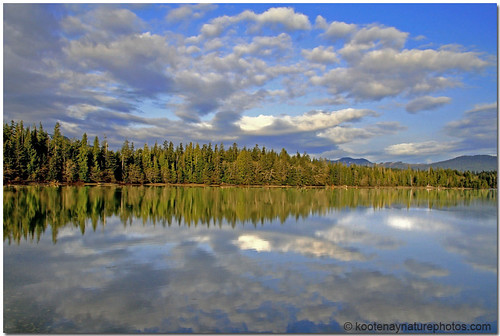 trees reflection landscapes bc inlet 1001nights reflexions cloudscapes haidagwaii 1001nightsmagiccity