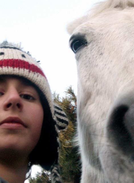 half girl half horse  ...