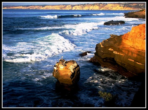 Walk on the Wild Side , La Jolla, California