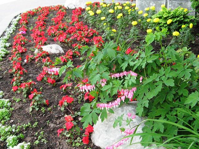 World Map App Garden Camera Finder The Weekly Flickr FlickrBlog