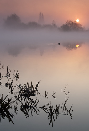 nottingham water sunrise landscape dawn attenborough nottinghamshire rivertrent nottinghamshirewildlifetrust attenboroughapr2010