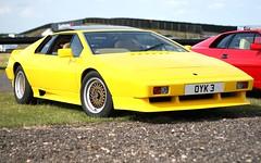 lamborghini(0.0), ferrari 288 gto(0.0), ferrari gt4(0.0), ferrari 308 gtb/gts(0.0), lamborghini jalpa(0.0), race car(1.0), automobile(1.0), lamborghini silhouette(1.0), vehicle(1.0), land vehicle(1.0), luxury vehicle(1.0), supercar(1.0), sports car(1.0),