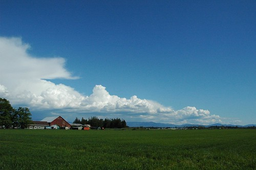 sky field clouds nikond70 farm washingtonstate lynden