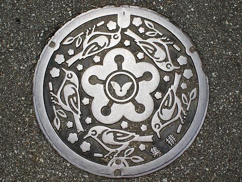Hikigawa Wakayama manhole cover(和歌山県日置川町のマンホール)