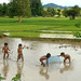 Lao kids fishing in the paddy fields