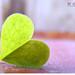 kalbim yerlerde by me--lek