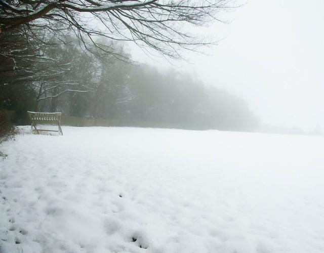 Misty Snow