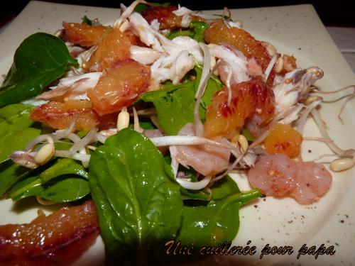 Salade de poisson aux pousses d pinard germes de soja et for Salade pour accompagner poisson