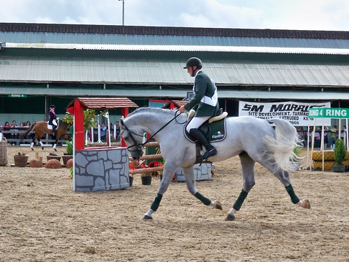 Dublin Horse Show photo