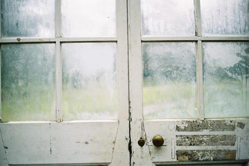 Green House, YSP