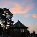 Kew Cemetary twilight tour