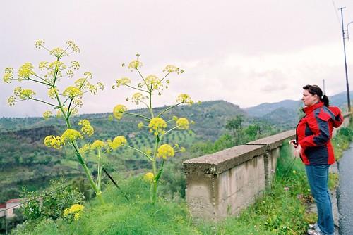 Italien 2009 Bovalino