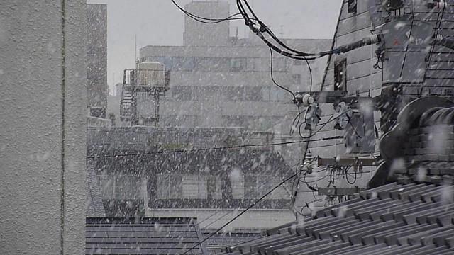 Kyoto Spring Snow