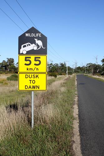 Tasmania: On the way to 9 Mile Beach