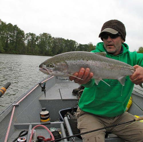 Eugene area summer steelhead report the caddis fly for Fishing eugene oregon