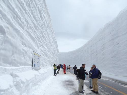 Tateyama Kurobe : Wisata Gunung Salju Yang Di Belah Di Jepang