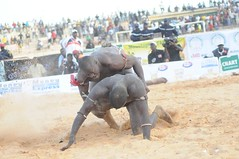 animal sports(0.0), rodeo(0.0), cattle-like mammal(0.0), western riding(0.0), bull(0.0), equestrian sport(0.0), mud(0.0), bull riding(0.0), event(1.0), sports(1.0), traditional sport(1.0),