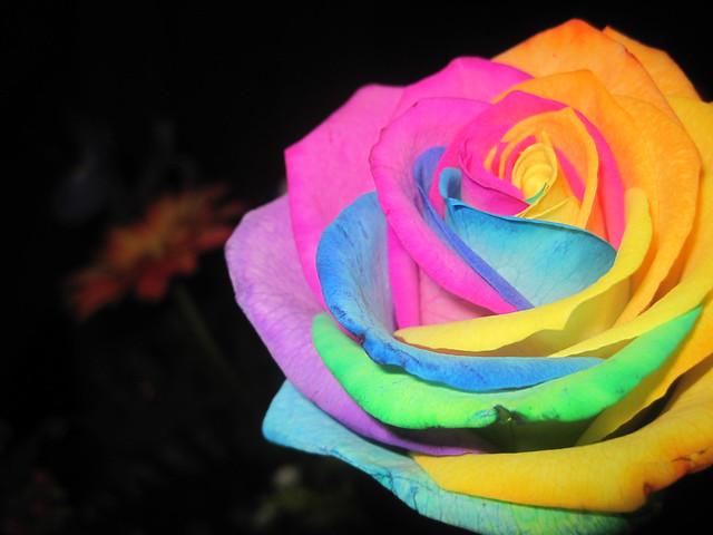 Arco iris arcoiris yahoo dating 6