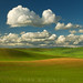 Palouse Cotton Ball Clouds
