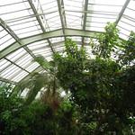 ภาพของ Les Grandes Serres du Jardin des Plantes. paris greenhouse jardindhiver jardindesplantes serre 75005 5earrondissement 5thdistrict vearrondissement serredesforêtstropicaleshumides