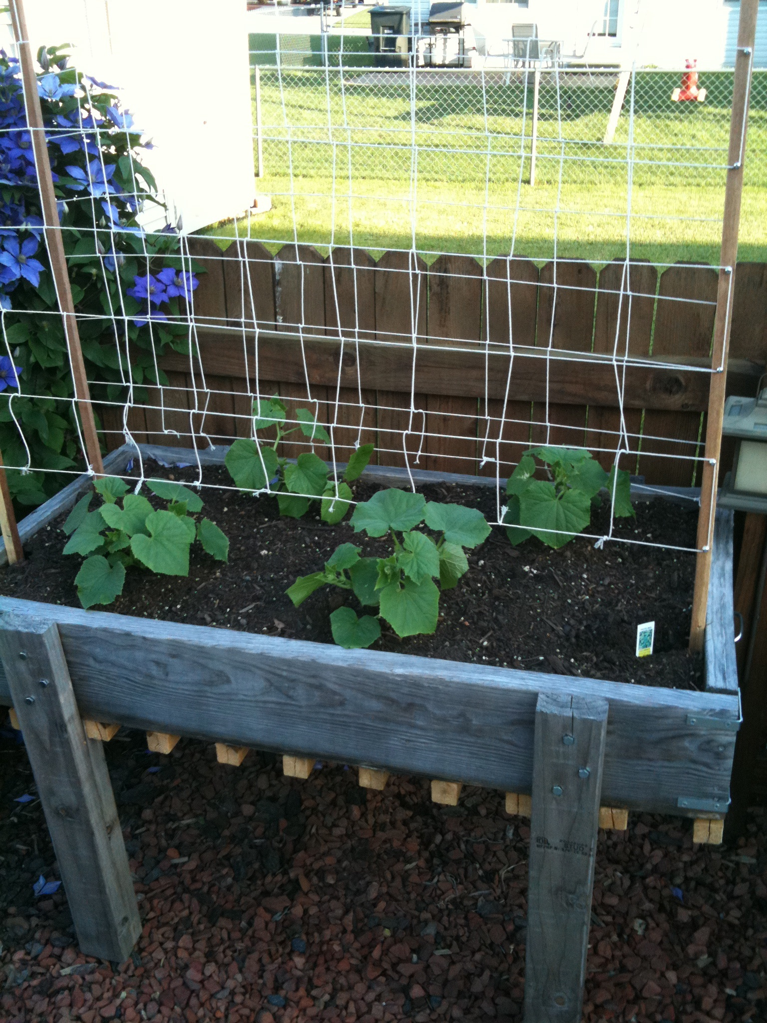 how to build a pvc cucumber trellis