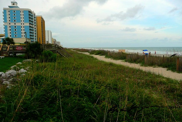 Condos At Myrtle Beach Sc For Sale