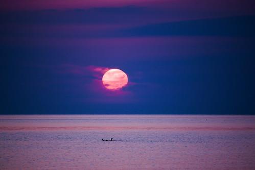 sea sky sun colors sunrise greece crete swimmer rethymno κρήτη ελλάδα θάλασσα ανατολή χρώματα ρέθυμνο ουρανόσ ήλιοσ κολυμβητήσ