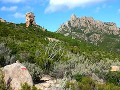 Sente de Capeddu : arrivée au GR 20 avec vue sur le mamelon rocheux et la Punta Balardia