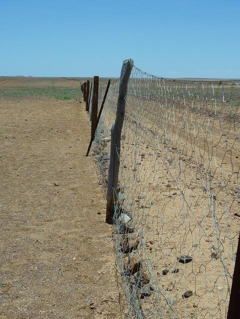 Dingo Fence @ Breakaways Reserve, South Australia, Australia