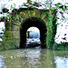 Loftus Woods - 1st Tunnel -1