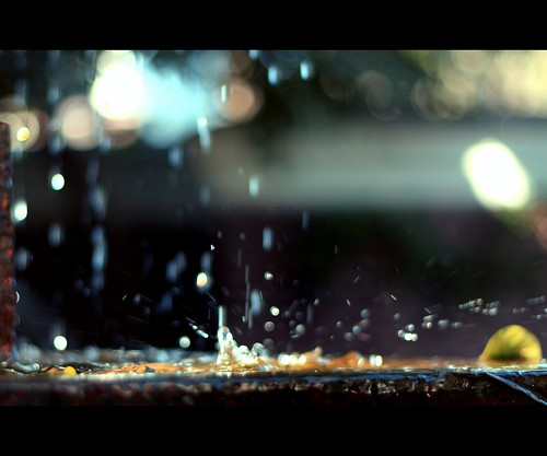 A Splash of Bokeh