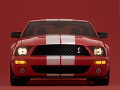 race car(0.0), boss 302 mustang(0.0), ford(0.0), automobile(1.0), automotive exterior(1.0), wheel(1.0), vehicle(1.0), stock car racing(1.0), performance car(1.0), automotive design(1.0), shelby mustang(1.0), grille(1.0), bumper(1.0), land vehicle(1.0), luxury vehicle(1.0), muscle car(1.0), sports car(1.0),
