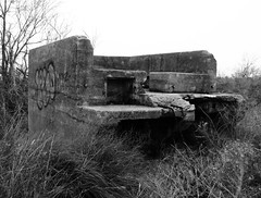 Platform Skid, Battery Croghan, Fort San Jacinto, Galveston, Texas 0116101742BW