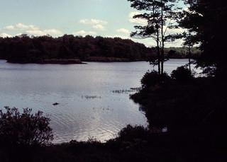 Lake Leigh - Rickett's Glen