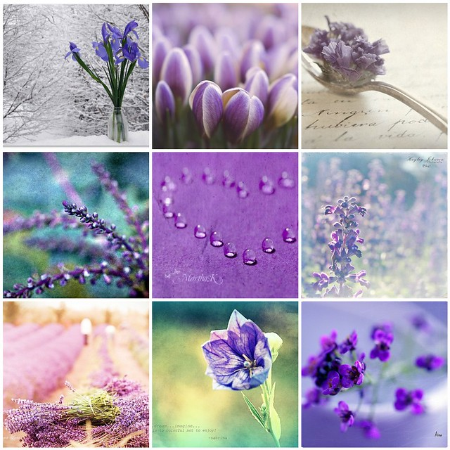 Things i love thursday: purple