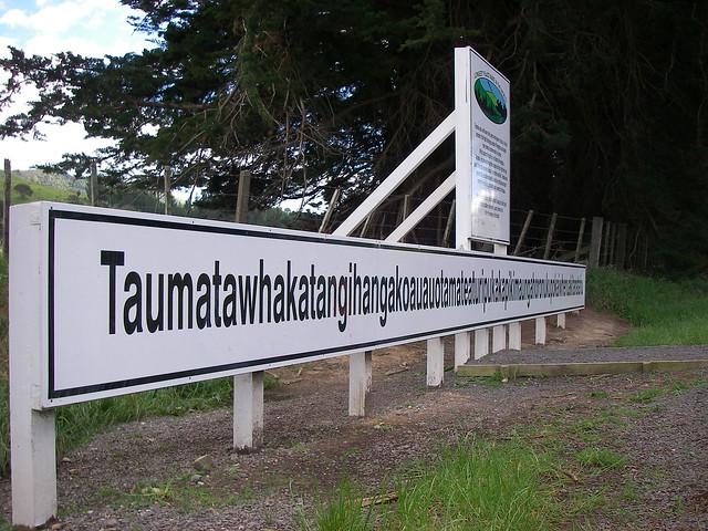 Tamatea