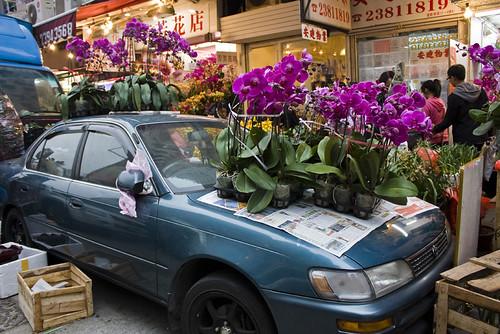Mongkok Flower Market