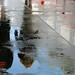 On the deck, after a rainshower by DenesG1-still off, computerproblems