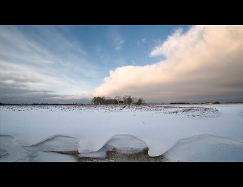 Farm and winter