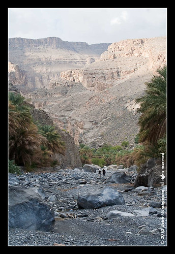 mountains tree rock river gulf middleeast canyon palmtree riverbed oman wadi rivier alhamra flus ghul jebelshams alhajarmountains addakhiliyahregion منطقةالداخلية addakhiliyah