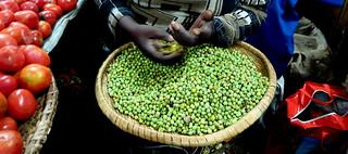 Sifting peas on Kimironko market in Kigali