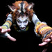 Cats The Musical  by illiara